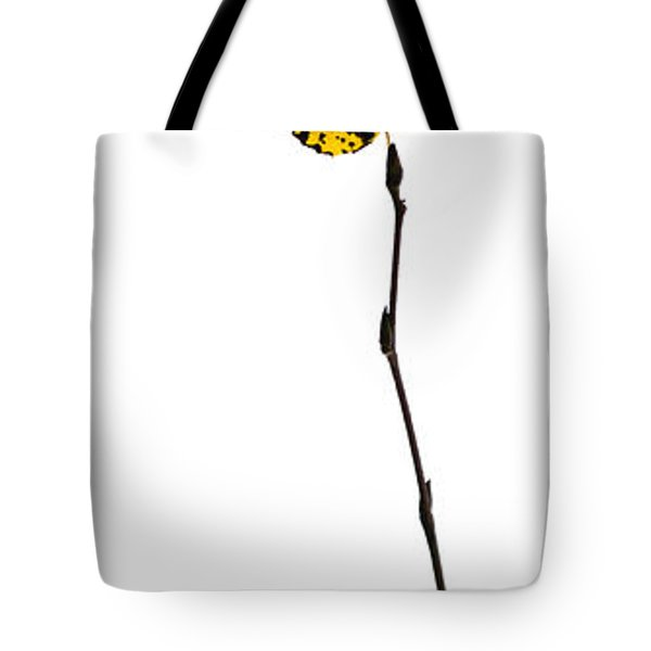 String Theory 2 - Featured 3 Tote Bag by Alexander Senin