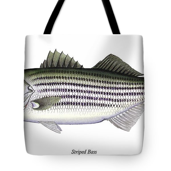 Striped Bass Tote Bag by Charles Harden