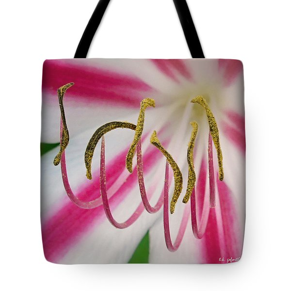 Striped Crinium Squared Tote Bag by TK Goforth
