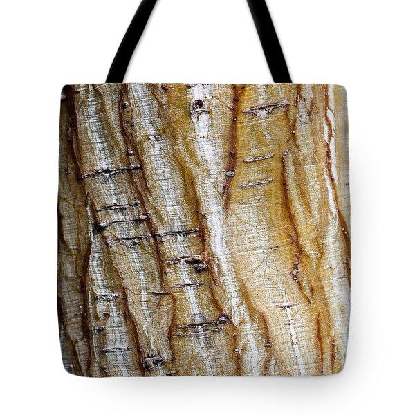 Striped Maple Tote Bag by Steven Ralser