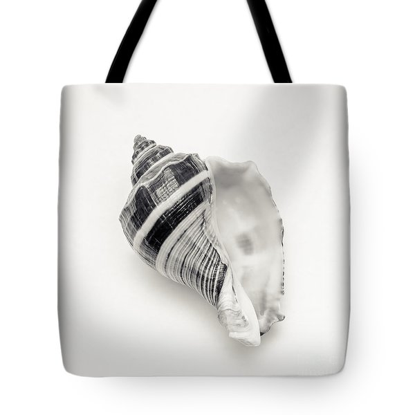 Striped Sea Shell 2 Tote Bag