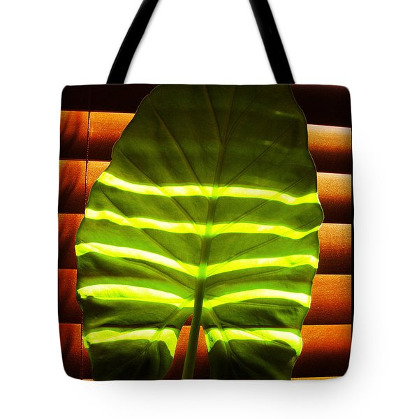 Tote Bag featuring the photograph Stripes Of Light by Nina Ficur Feenan
