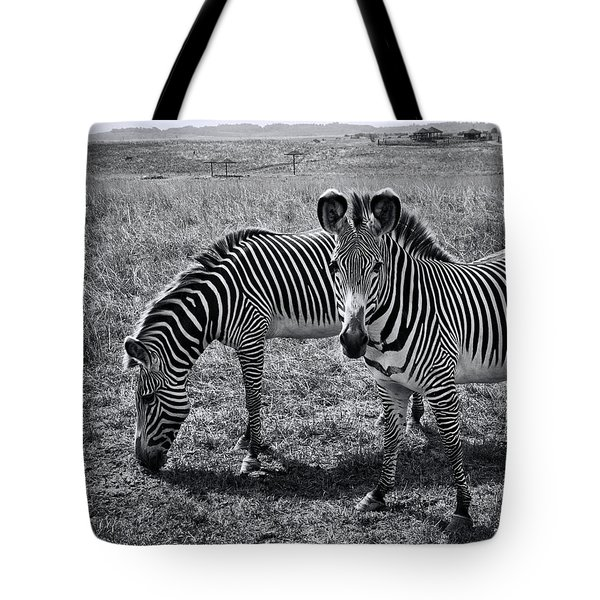 Stripes Duo Tote Bag