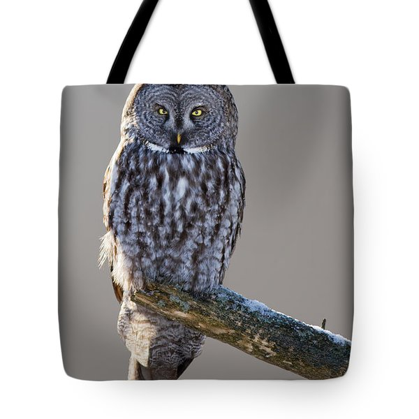 Strix Nebulosa Tote Bag by Mircea Costina Photography