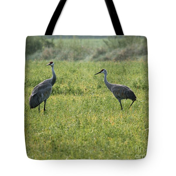 Tote Bag featuring the photograph Strolling Cranes by Debbie Hart