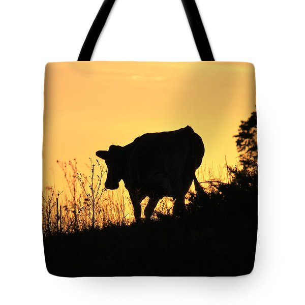Tote Bag featuring the photograph Strolling Into The Sunset by Penny Meyers