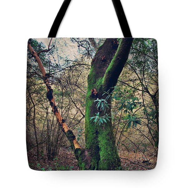 Strong Enough To Hold You Tote Bag by Laurie Search
