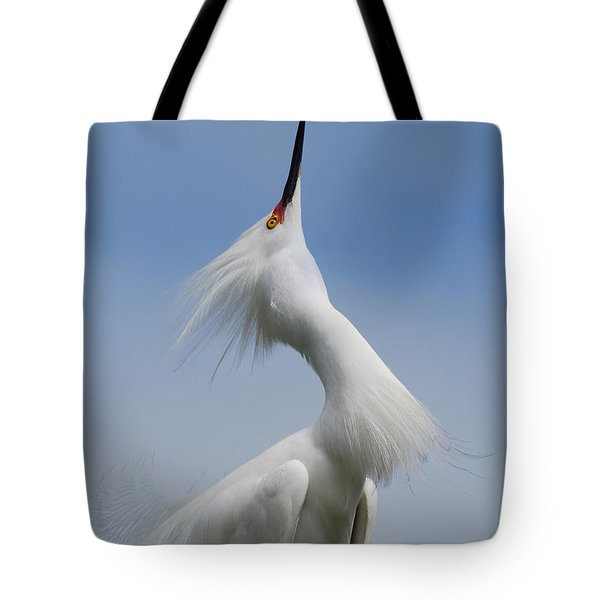 Strut Yer Stuff Tote Bag by Skip Willits