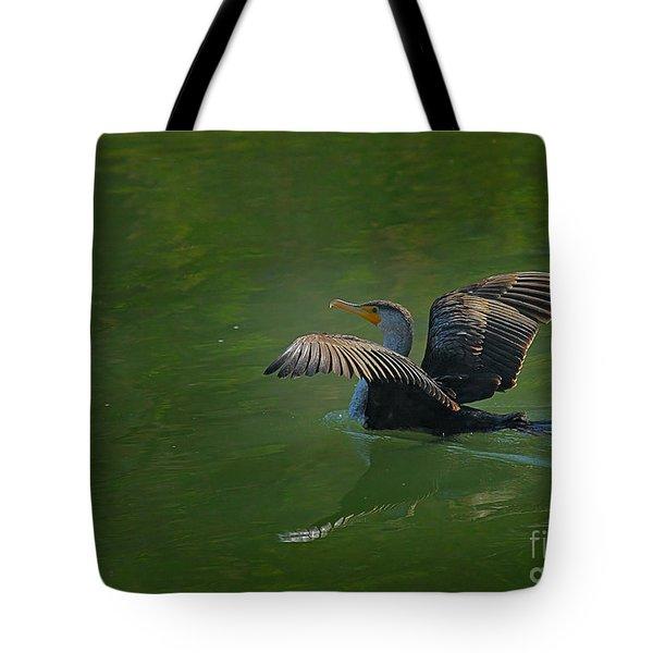 Strutting Cormorant Tote Bag