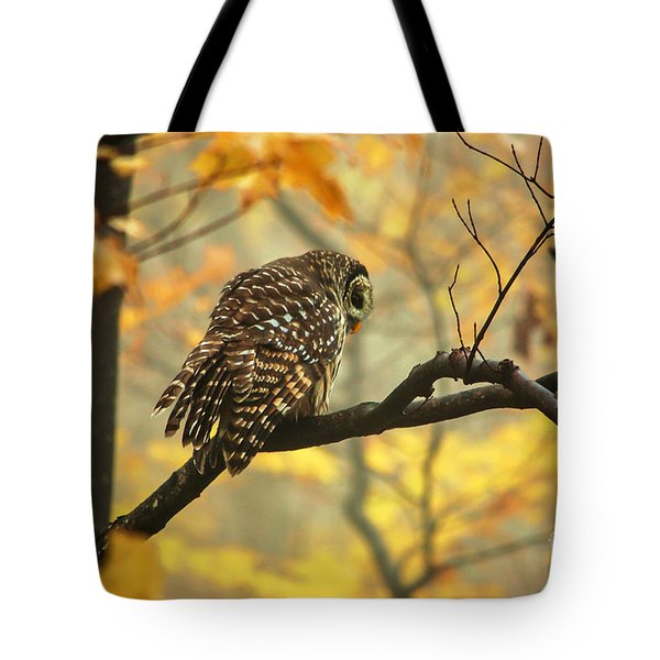 Stubborn Owl Tote Bag
