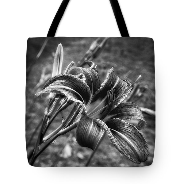 Study In Black And White Tote Bag