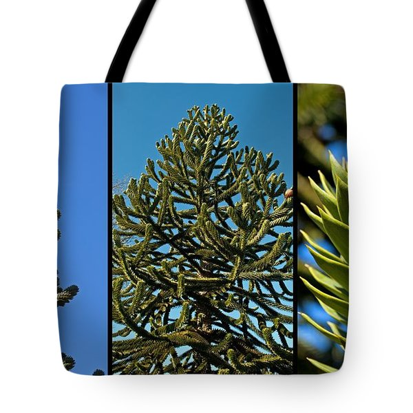 Study Of The Monkey Puzzle Tree Tote Bag