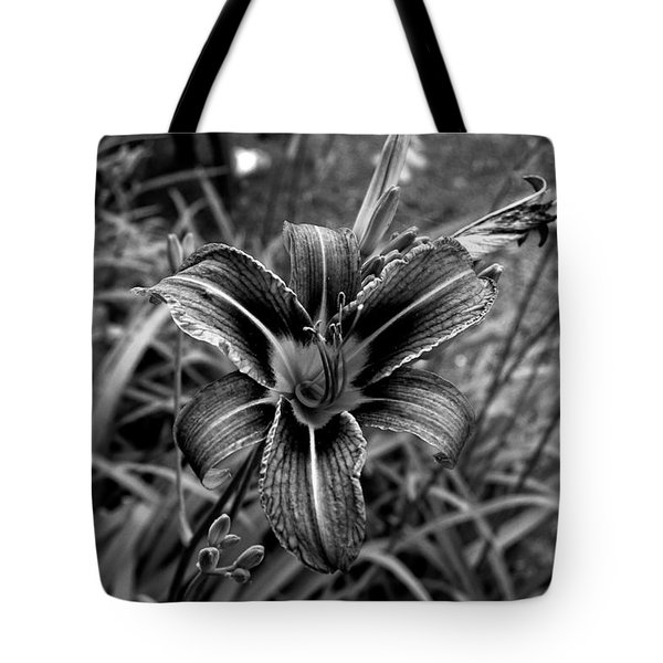 Study Two Tote Bag