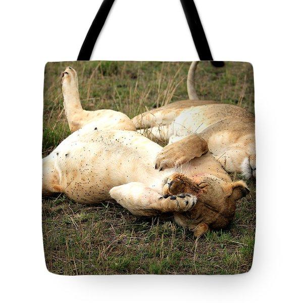 Stuffed Tote Bag