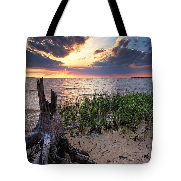 Stumps And Sunset On Oyster Bay Tote Bag by Michael Thomas
