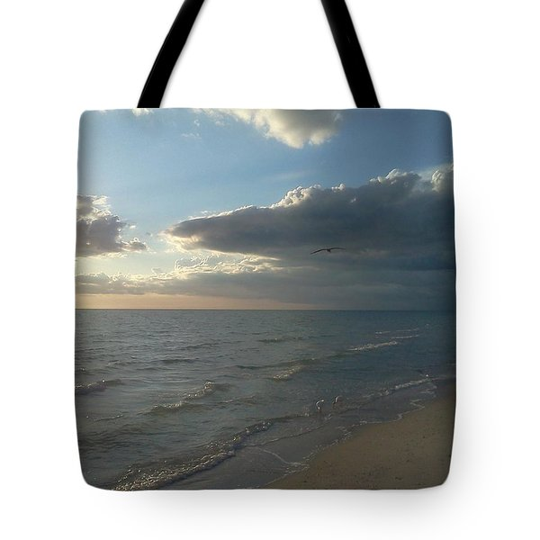 Subdued Sunset Tote Bag by K Simmons Luna