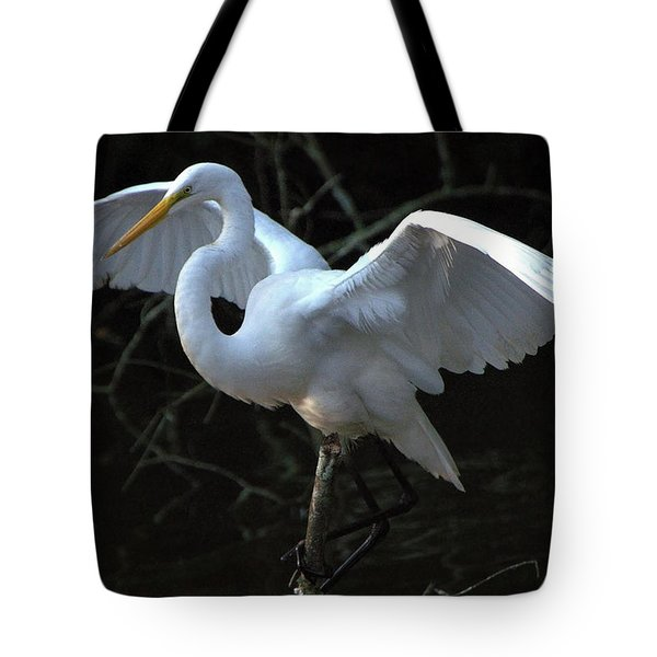 Tote Bag featuring the photograph Successful Hunt by Charlotte Schafer