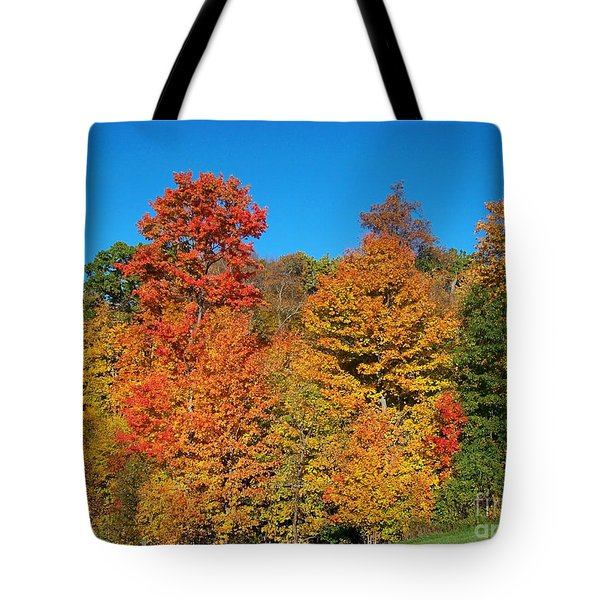 Such A Colorful Day 2 Tote Bag