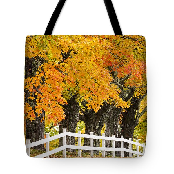 Sugar Maple Color Tote Bag by Alan L Graham
