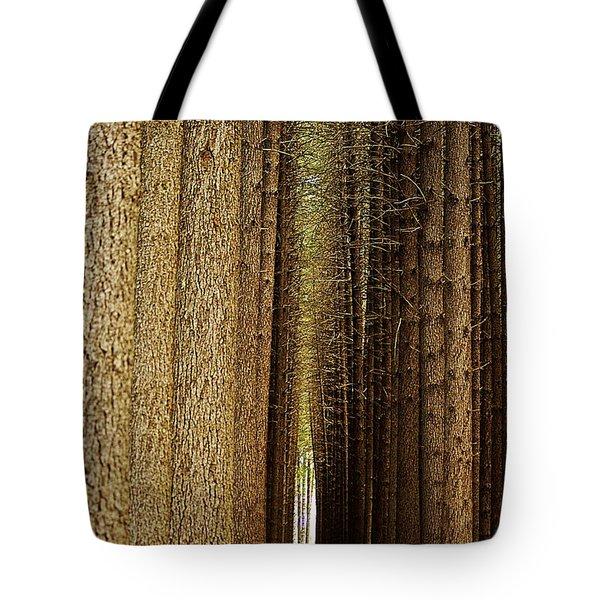 Sugar Pine Walk Tote Bag