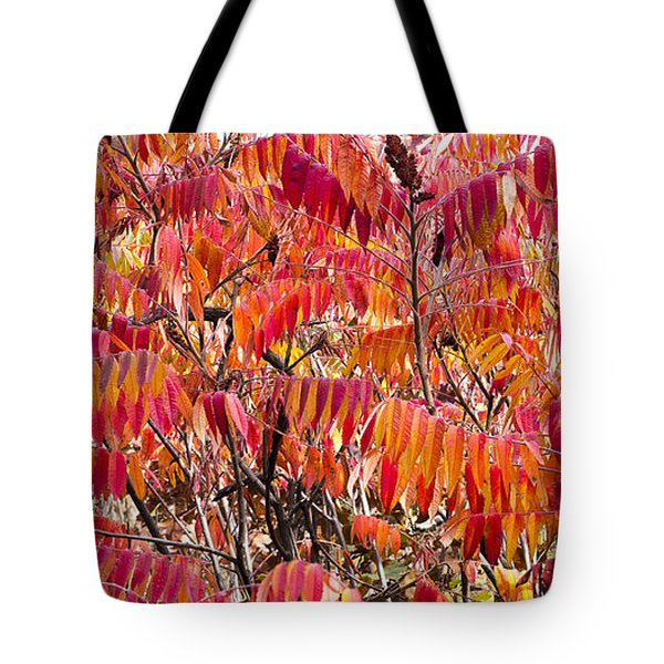 Sumac Tote Bag by Steven Ralser
