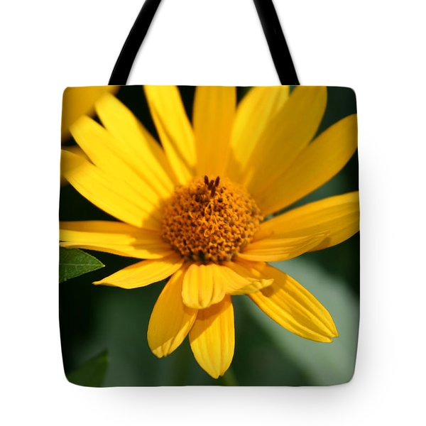 Tote Bag featuring the photograph Summer Dance by Denyse Duhaime