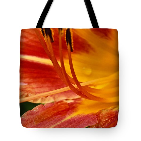 Tote Bag featuring the photograph Summer Daylily by Julie Andel