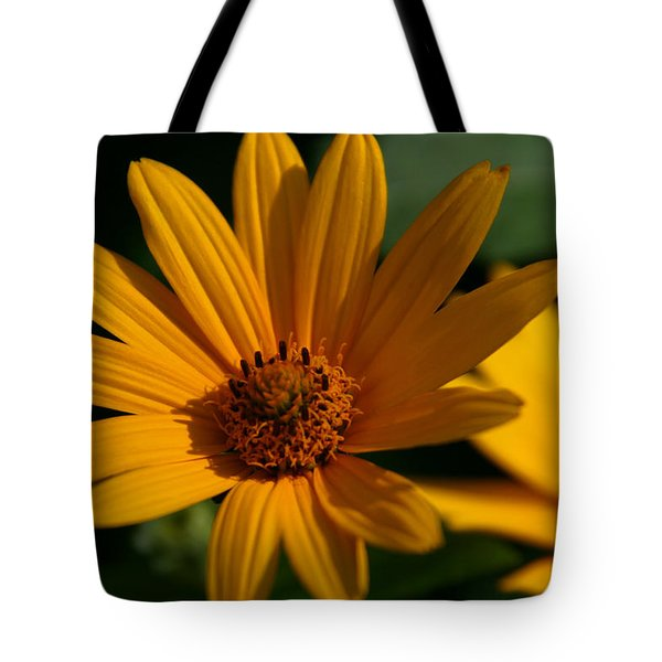 Tote Bag featuring the photograph Summer Delight by Denyse Duhaime