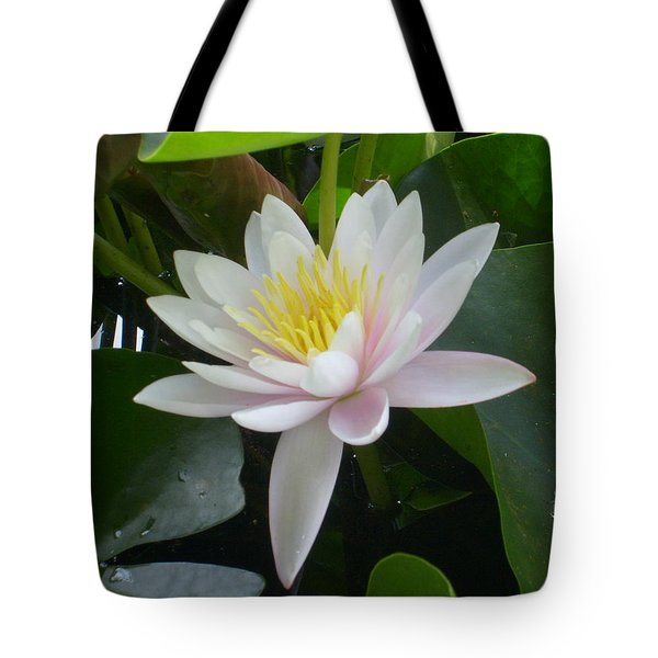 Summer Fun Tote Bag by Ann Willmore