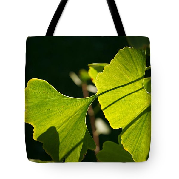 Tote Bag featuring the photograph Summer Ginkgo Leaves by MM Anderson