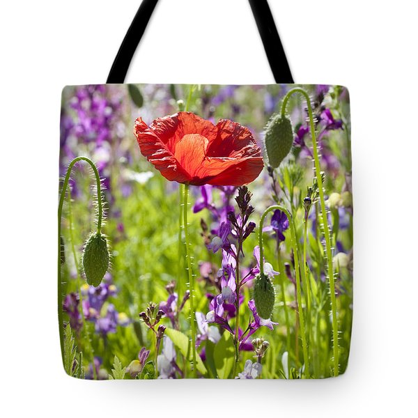 Tote Bag featuring the photograph Summer by Lana Enderle