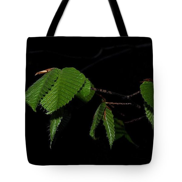 Summer Leaves On Black Tote Bag