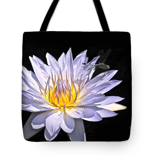 Summer Magic -- Dragonfly On Waterlily On Black Tote Bag