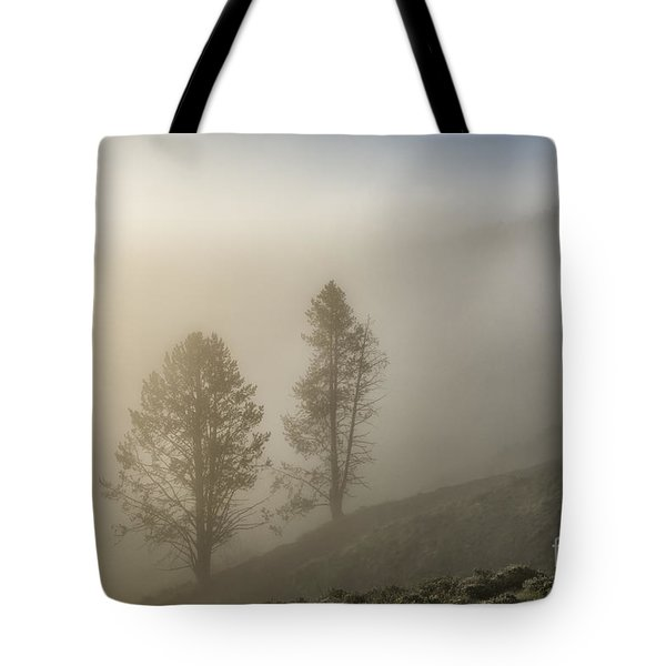 Summer Morning In Yellowstone Tote Bag by Sandra Bronstein