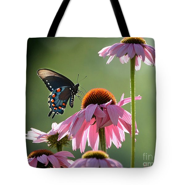 Summer Morning Light Tote Bag