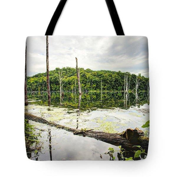 Summer Morning On Monksville Reservoir 1 Tote Bag