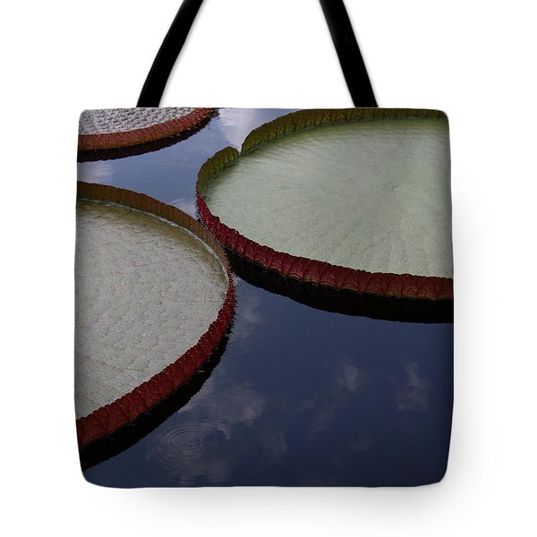 Summer Geometry Tote Bag by Yvonne Wright