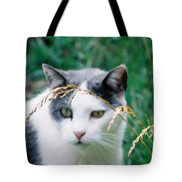 Tote Bag featuring the photograph Summer Stroll by Donna Brown