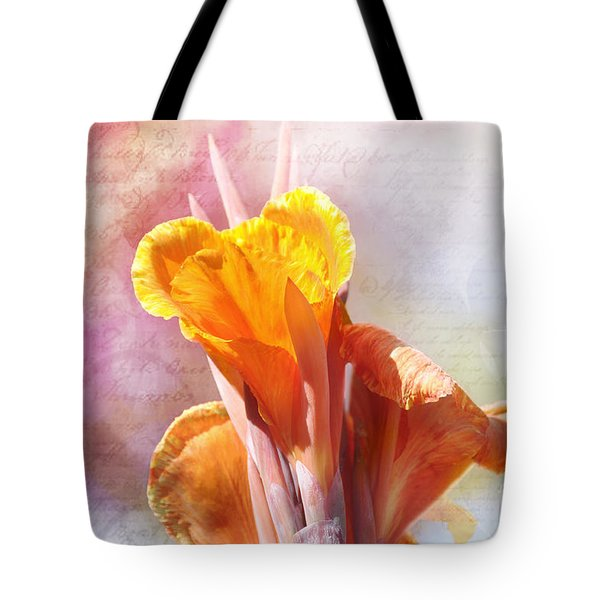 Tote Bag featuring the photograph Summer Sunset by Elaine Manley