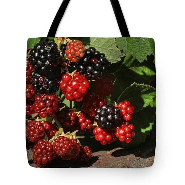 Summer's Bounty Tote Bag by Donna Kennedy