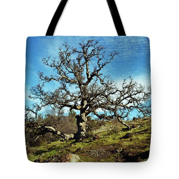 Summit Of Monkey Face Tote Bag by Holly Blunkall