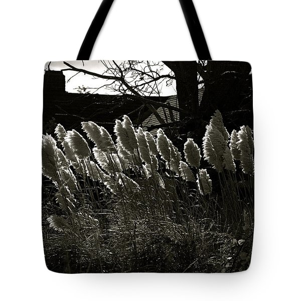 Sun And Shadow Tote Bag