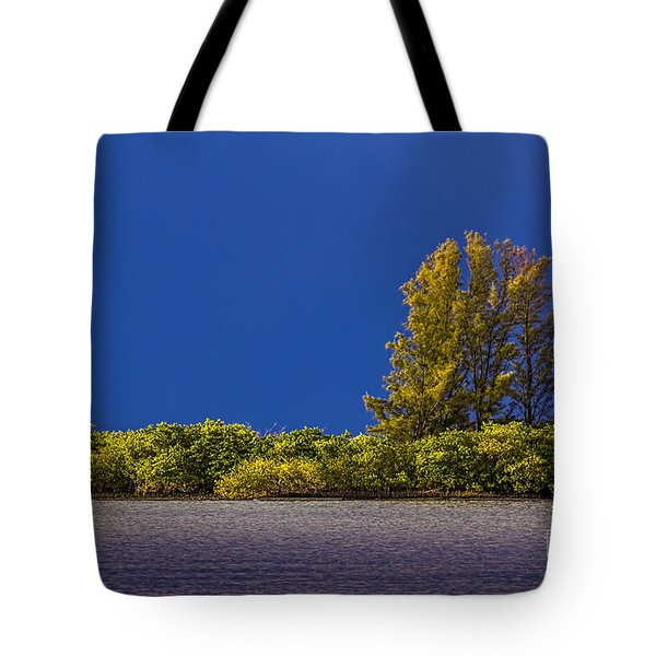 Sun Bathed Tote Bag