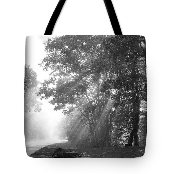 Sun Beams Tote Bag by Todd Hostetter