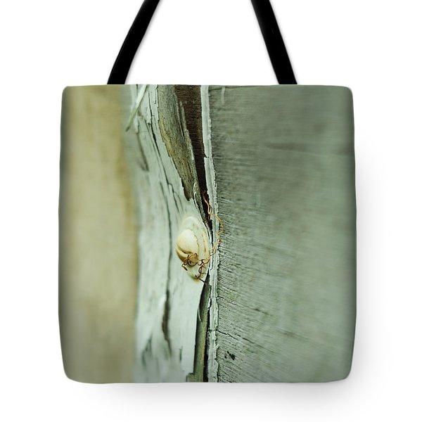 Sun Bleached Tote Bag