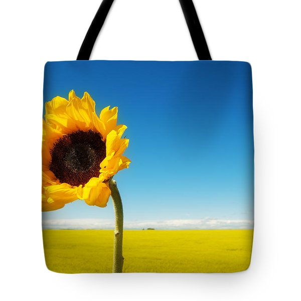 Tote Bag featuring the photograph Sun Drenched Dreams by Lisa Knechtel