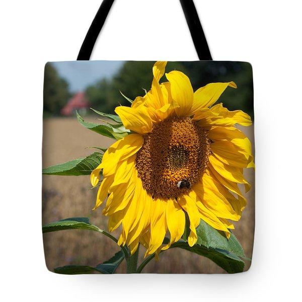Sun Flower Fields Tote Bag
