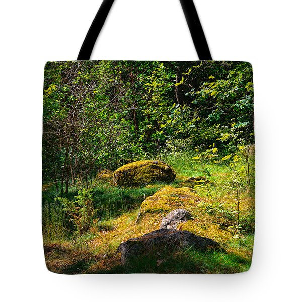 Tote Bag featuring the photograph Sun In The Forest by Leif Sohlman