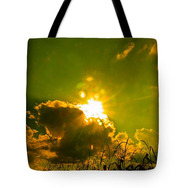Sun Nest Tote Bag by Nick Kirby