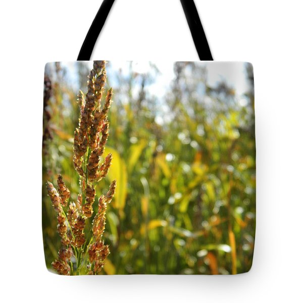 Sun Of Life Tote Bag by Andrea Anderegg